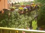 Villa Bed and Breakfast te koop in Toscane Lucca 4