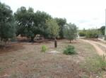 Villa met zeezicht en zwembad te koop in Italie Puglia Carovigno 34