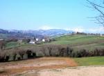 Agriturismo in Montottone, Le Marche, Italie te koop 11