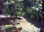Villa te koop in Tortoreto, Abruzzo, Italie 9