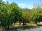 Vrijstaand huis - villa te koop Recanati Le Marche Italie 33