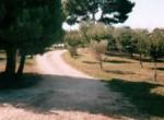 Vrijstaand huis - villa te koop Recanati Le Marche Italie 8