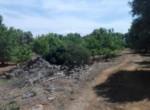 bouwgrond in carovigno puglia te koop 2
