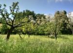 fruitgaard