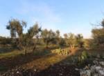 trullo lamie te koop in Puglia - Francavilla Fontana 9