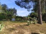 Villa te koop in Le Marche - ASCOLI PICENO - VALLE VENERE 4