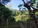 Villa te koop in Le Marche - ASCOLI PICENO - VALLE VENERE 43