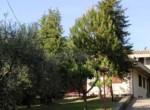 Villa te koop in Le Marche - ASCOLI PICENO - VALLE VENERE 45