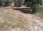 renovatieproject in le marche te koop - ripatransone 12
