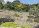 villa met zwembad in le marche te koop - lapedona 38