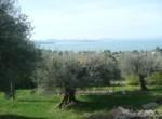 Umbrie te koop - stenen huis met uitzicht op trasimeno meer 9