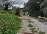 Agriturismo in Toscane te koop - Massarosa 8