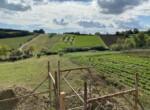Altidona - huis in opbouw met zeezicht te koop in Le Marche 18