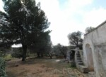 Trullo tussen Ostuni en Ceglie Messapica te koop - Puglia 10