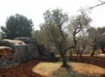 Trullo tussen Ostuni en Ceglie Messapica te koop - Puglia 5