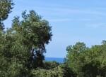bouwgrond met zeezicht in Puglia te koop - Carovigno 1