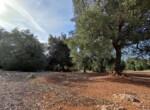 bouwgrond met zeezicht in Puglia te koop - Carovigno 22