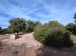 bouwgrond met zeezicht in Puglia te koop - Carovigno 23