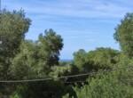bouwgrond met zeezicht in Puglia te koop - Carovigno 5