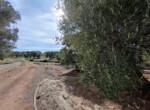 bouwgrond met zeezicht in Puglia te koop - Carovigno 9