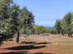 bouwgrond zeezicht puglia carovigno 16