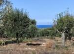 bouwgrond zeezicht puglia carovigno 5
