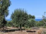 bouwgrond zeezicht puglia carovigno 9