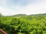 huis met landbouwgrond te koop in Merana 28