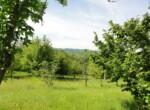 huis met landbouwgrond te koop in Merana 32