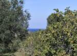 villa met zeezicht in aanbouw - carovigno puglia 14