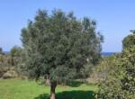 villa met zeezicht in aanbouw - carovigno puglia 15