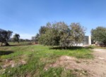 villa met zeezicht in aanbouw - carovigno puglia 18