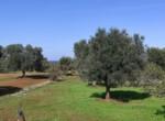 villa met zeezicht in aanbouw - carovigno puglia 19
