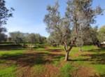 villa met zeezicht in aanbouw - carovigno puglia 21