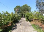 Ceglie Messapica - Karakteristiek trullo complex in Puglia 11