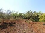 Ceglie Messapica - Karakteristiek trullo complex in Puglia 13