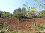Ceglie Messapica - Karakteristiek trullo complex in Puglia 19