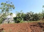Ceglie Messapica - Karakteristiek trullo complex in Puglia 20