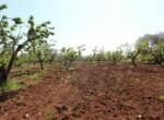 Ceglie Messapica - Karakteristiek trullo complex in Puglia 7