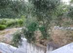 Ruwbouw huis te koop in Andora Liguria 17