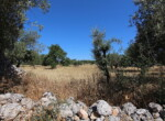 Te renoveren boerderij te koop in Sicilie 12