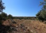 Te renoveren boerderij te koop in Sicilie 7