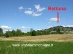 Bouwgrond te koop in Umbrie Bettona 1