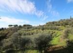 Huis met zwembad in Toscane te koop - Palaia 13
