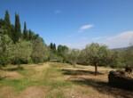 Stenen huis te koop bij Volterra - Toscane 8