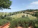 Villa met zwembad bij Mondavio Le Marche te koop 12