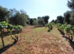 San Vito dei Normanni af te werken villa in Puglia te koop 6