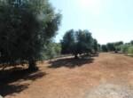 San Vito dei Normanni af te werken villa in Puglia te koop 9