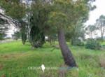 siracuse te renoveren villa te koop - Sicilie 1